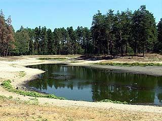 С рельефа Воронежской области исчезают озера и реки