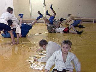 Секция самбо стала спортивной школой