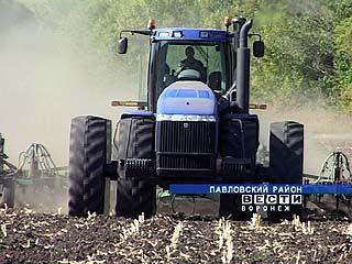 Сев озимых в Воронежской области почти окончен