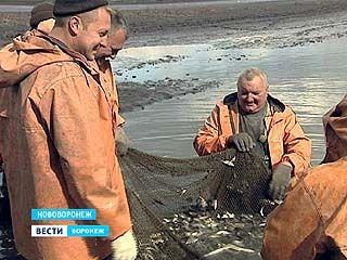 Сезон ловли мальков открыли сотрудники воронежской рыбоохраны