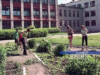 Школы Таловского района сотрудничают с центром занятости