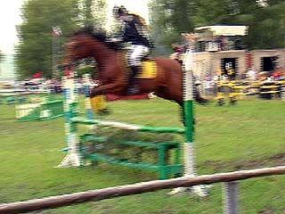 Сильная жара чуть не сорвала чемпионат области по конному спорту