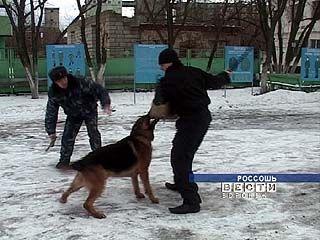 Собаки-охранники - их жизнь подчинена только службе