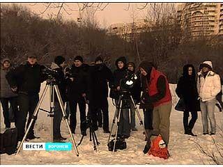 """Сотни воронежцев пытаются """"поймать"""" комету за хвост"""