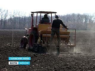 Сотрудники института имени Докучаева вышли в поля