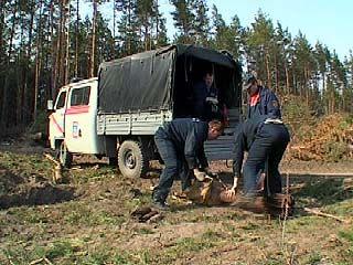 Сотрудники МЧС обезвредили несколько боеприпасов времён войны