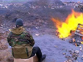 Сотрудники Наркоконтроля сожгли крупную партию кондитерского мака