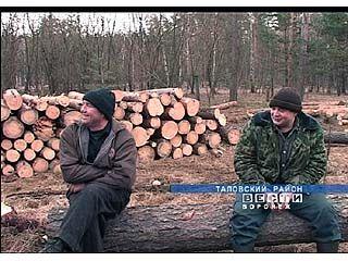 Сотрудники новочигольского лесничества могут остаться без работы