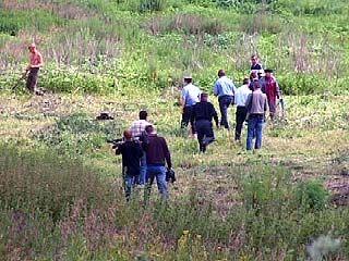 Сотрудники Новохоперского ОВД уничтожили 1,5 гектара конопли