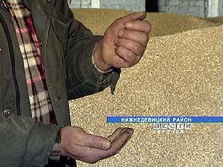 Стартовали государственные зерновые интервенции