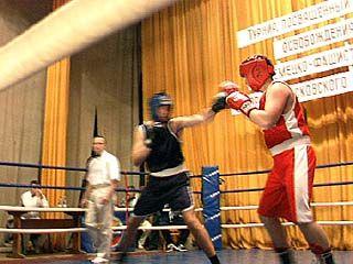 Стартовали областные соревнования по боксу