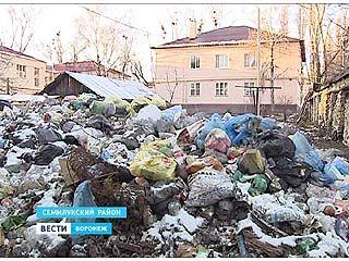 Свалку в поселке Стрелица Семилукского района до сих пор не убрали