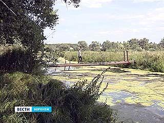 Тавровку обещают прочистить: реку загрязняют отходы местных жителей