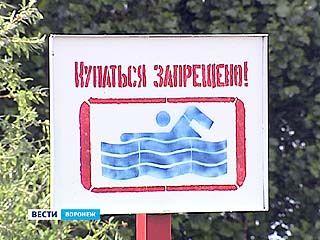 Только половина из 150 пляжей Воронежской области соответствует требованиям