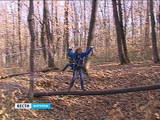 """Туристический марш-бросок устроили для студентов в парке """"Динамо"""""""