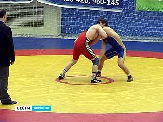 Турнир по вольной борьбе памяти Сергея Горожанкина состоялся в Воронеже