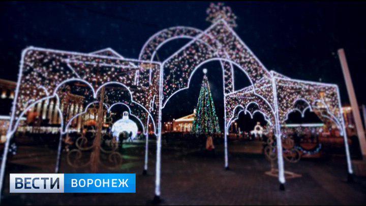 Мэрия Воронежа выбрала поставщика новогодних гирлянд для украшения улиц