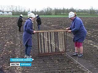 Ученые института имени Докучаева вышли в поля