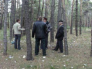 Управлению лесного хозяйства придется изрядно потрудиться