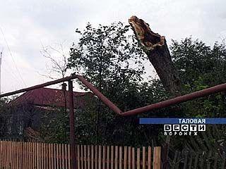 Ураган пронёсся над Таловой
