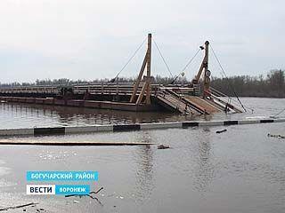 Уровень Дона в Богучарском районе поднялся на два метра