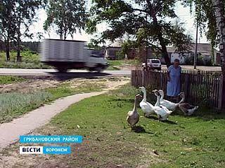 Уже несколько месяцев через село Красовка проходит федеральная трасса