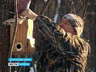 В Бобровском районе орнитолог уже 5 лет подкармливает птиц зимой