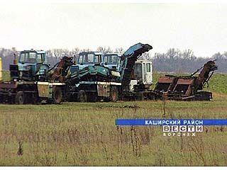 В Богучарском районе полностью закончили уборку ранних зерновых
