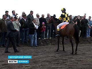 В Богучарском районе состоялись межобластные конные состязания