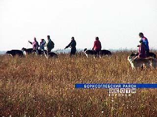 В Борисоглебске финишировали полевые испытания борзых