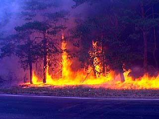 В Борисоглебске произошёл крупный пожар
