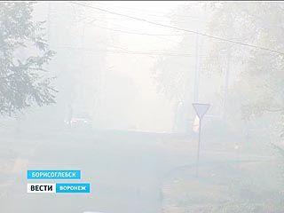В Борисоглебске тлеет камыш - город и окрестности в едком дыму