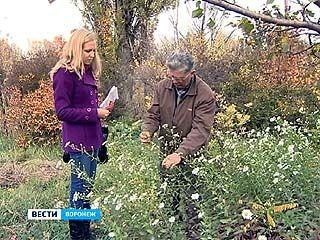 В ботаническом саду собраны уникальные растения, цветущие даже в мороз