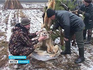 В Бутурлиновке отметили День охотника