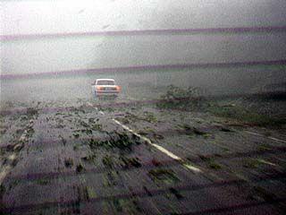 В Грибановском районе гроза и ураган стали настоящим стихийным бедствием