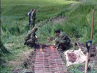 В Хохольском районе уничтожили почти 400 боеприпасов