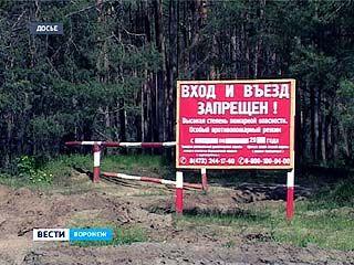 В хвойные леса Воронежской области снова ограничен въезд автомобилей