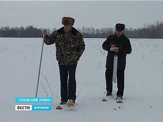 В институте имени Докучаева ведут мониторинг снега