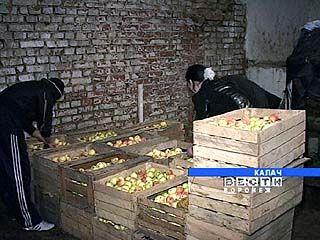В калачеевском интернате заготавливают овощи на зиму