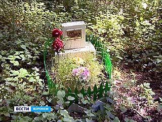 В Коминтерновском районе кладбище бездомных животных соседствует с жилыми домами