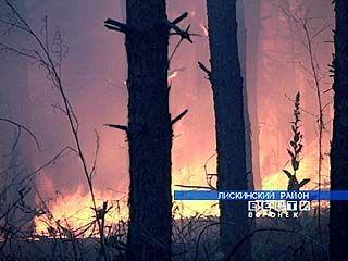 В лесах области сложилась пожароопасная обстановка