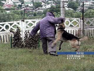 В Лисках провели соревнования по служебному собаководству