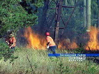 В Лисках вторые сутки продолжается борьба с крупным лесным пожаром