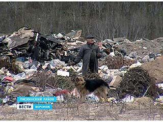 В Лискинском районе мусор вывозят не на полигоны, а вываливают на окраинах сел