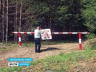 В Лискинском районе пожароопасный период хотят продлить до 10 октября