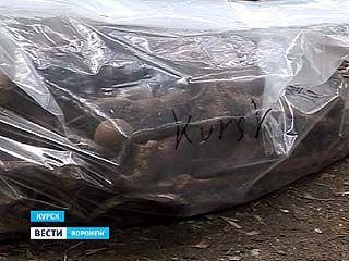 В начале сентября под Воронежем перезахоронят останки венгерских солдат