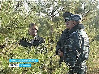 В Новохоперском районе нашли тысячи гектаров непаханых полей