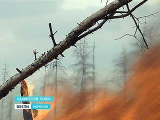 В области стартовал сезон расчистки горельников - воронежцев возмущает едкий дым и близость открытого огня