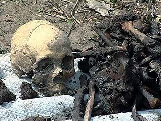 В Острогожском районе перезахоронили останки советских бойцов