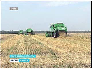 В отношении одного из крупных сельхозпроизводителей возбуждено уголовное дело